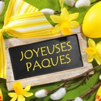 L'équipe Fcc Entreprises vous souhaite de Joyeuses Pâques !